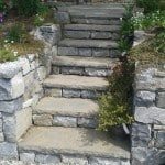 Shown here our Liscannor Stone Steps in a garden setting