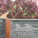 Shown here our Liscannor stone in a garden setting